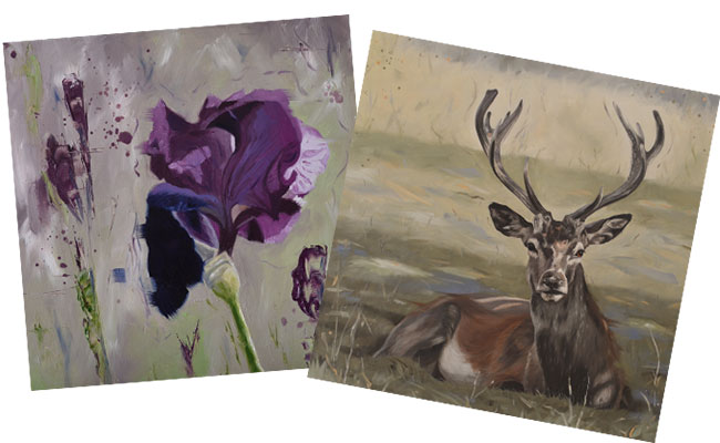 Iris and stag image
