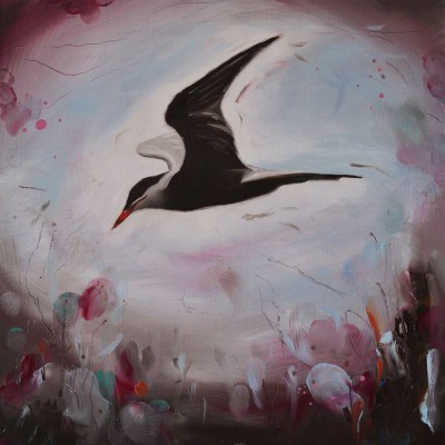 Common Tern Oil Painting