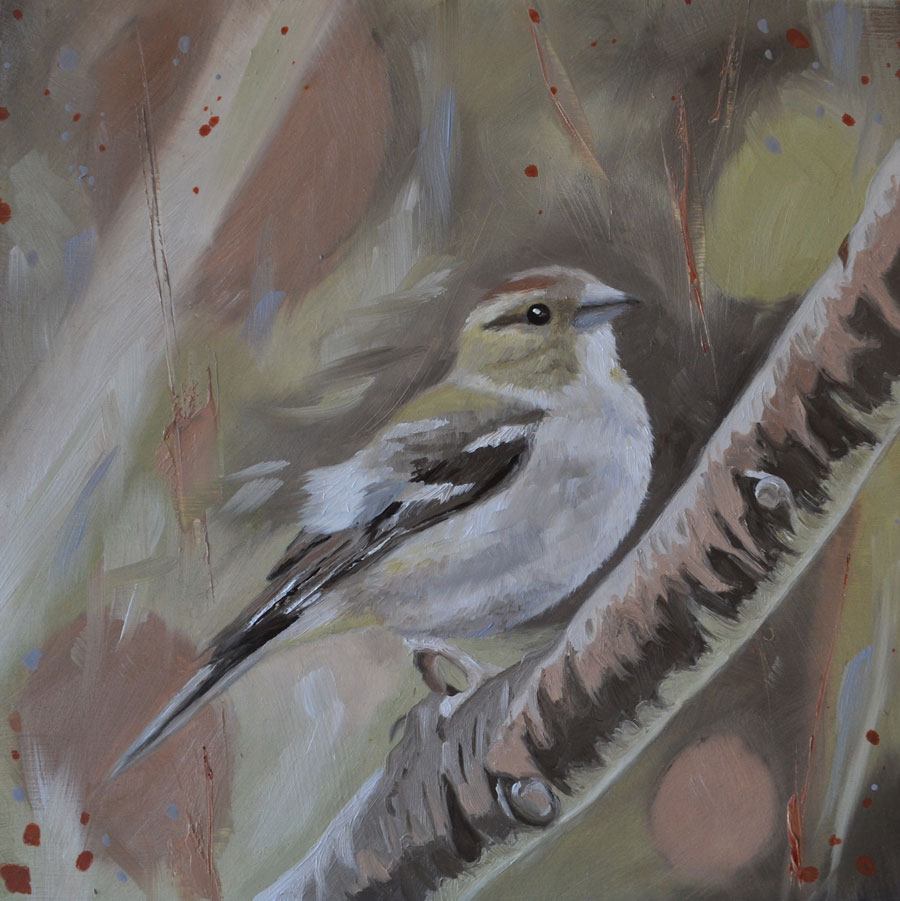 Chaffinch oil painting