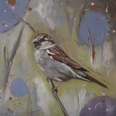 House Sparrow Oil Painting