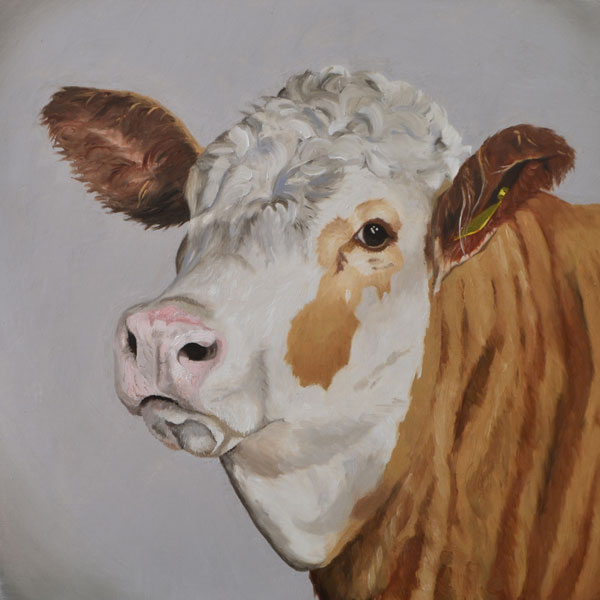 Oil Painting Of A Simmental Cow