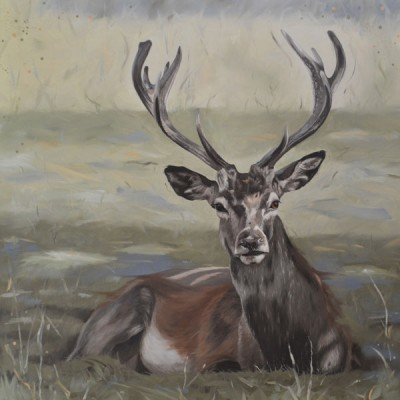 Dignity - Oil Painting Of Stag