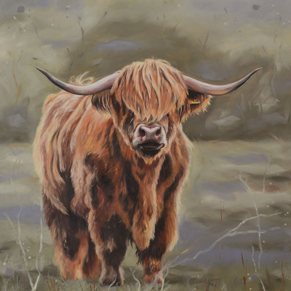 Highland Cow – Fine Art Print