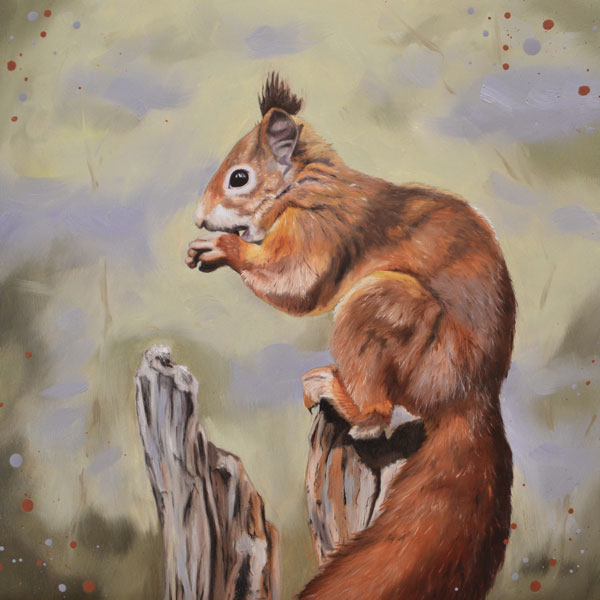 Red Squirrel – Fine Art Print