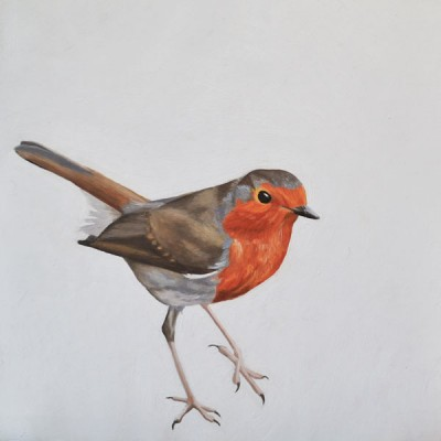 On The Move - Robin