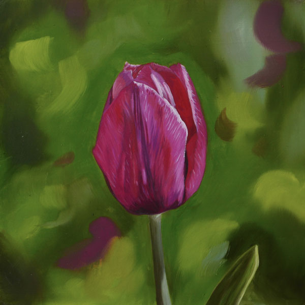 Pink Tulip Oil Painting