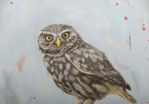 'Attitude' - Oil Painting Of A Little Owl By Laura Beardsell-Moore