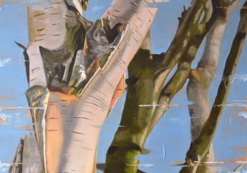 Evening Sunlight - Oil Painting Of Birch Branches By Laura Beardsell-Moore