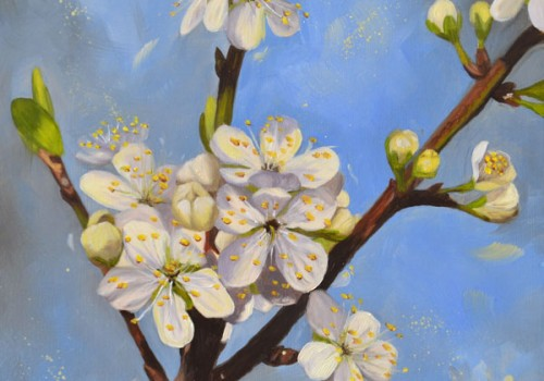 Oil Painting Of 'Opal' Plum Blossom