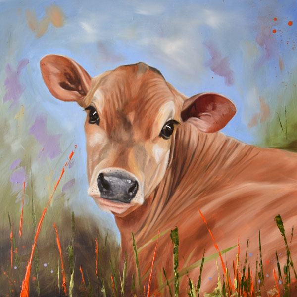 Bright Eyes - Oil Painting Of A Jersey Calf