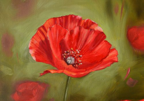 Oil Painting Of A Poppy Flower